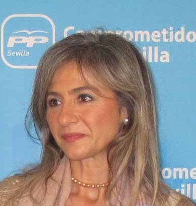 El PP de Sevilla denuncia la inacción de la Junta ante las 'goteras' en las caracolas el CEIP Manuel Medina