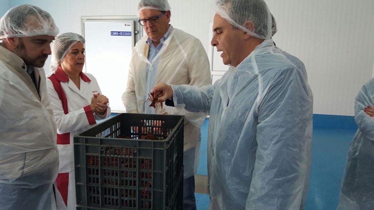 """El PP de Sevilla destaca """"el gran trabajo que está llevando a cabo el Gobierno de la Nación para garantizar el futuro del sector del Cangrejo Rojo"""""""