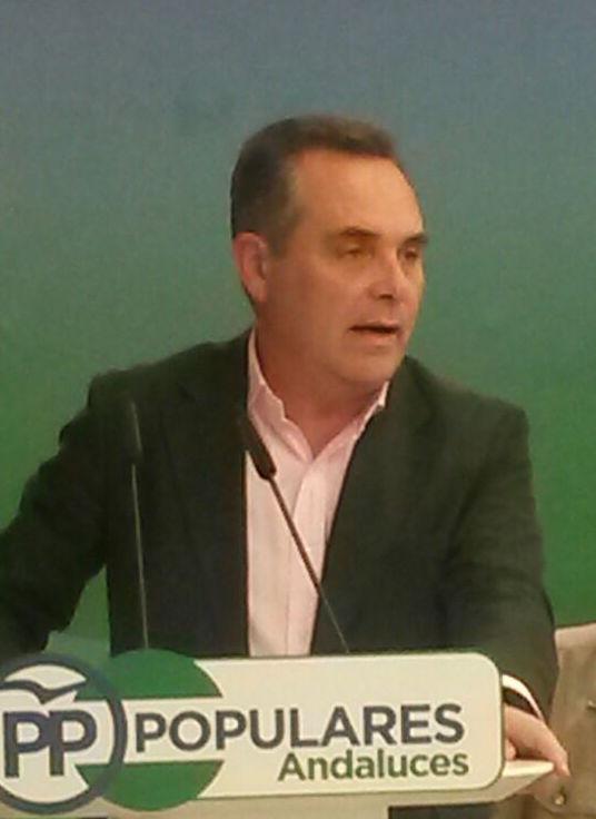 El PP de Sevilla reclama a la Junta que frene la 'cruzada contra la sanidad' en la provincia de Sevilla