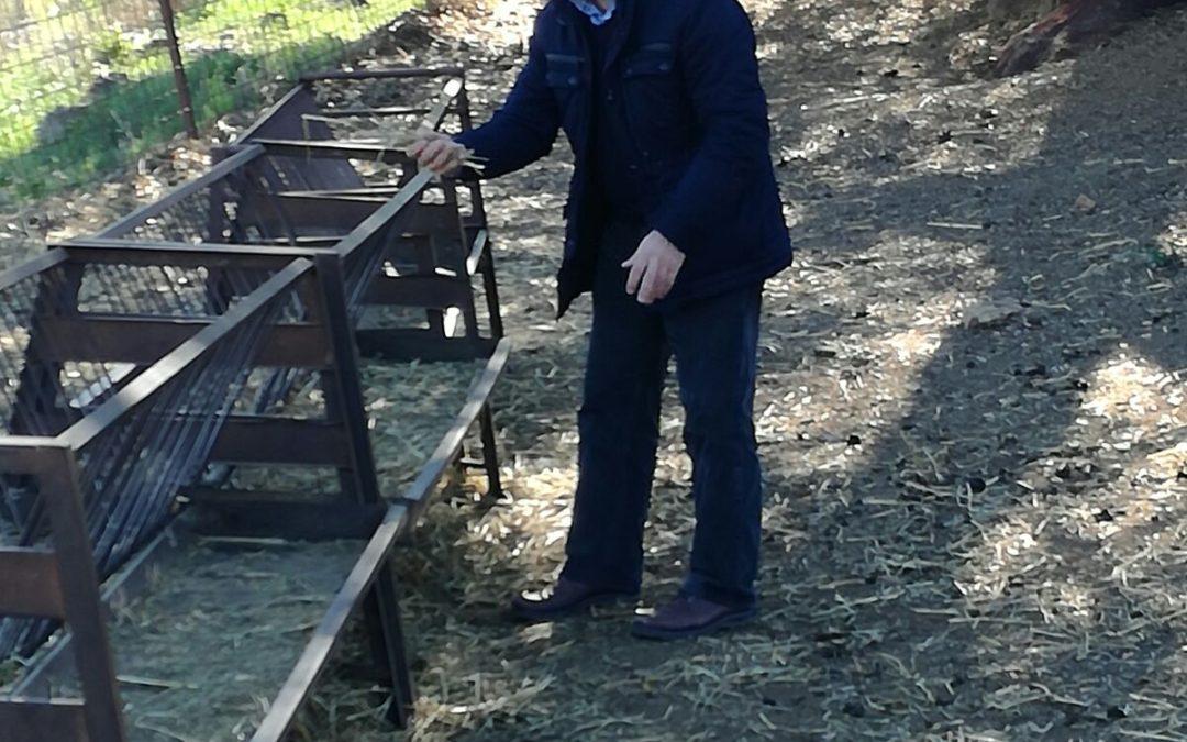 El PP de Sevilla reclama a la Junta de Andalucía ayudas para afectados por la sequía en Sierra Morena