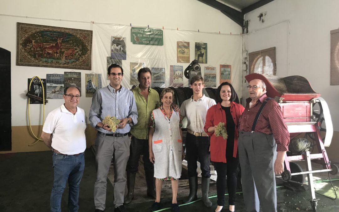 El PP lleva a la Diputación y al Parlamento una iniciativa sobre la industria del vino del Aljarafe